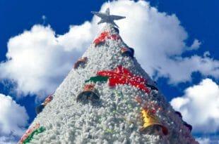 Voli per Natale e Capodanno